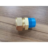 China Swagelok standard brass fittings with cutting rings factory