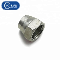 China YC-LOK Hydraulic NPT ORFS Thread Plug factory